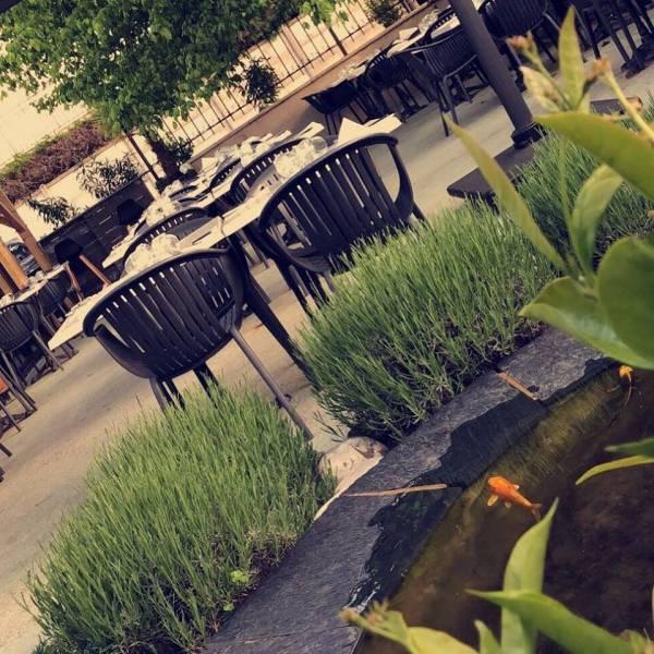 Terrasse Ombragée Les Plantes à Choisir: Restaurant De Cuisine Italienne Avec Terrasse Ombragée Sur